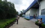 Diệt côn trùng tại Bắc Ninh